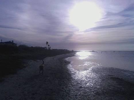 Izzy's Beach by Chris Melaga
