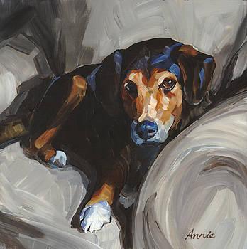 Jack by Annie Salness