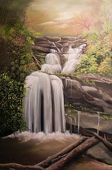 Jack's Waterfall by Laura Brown