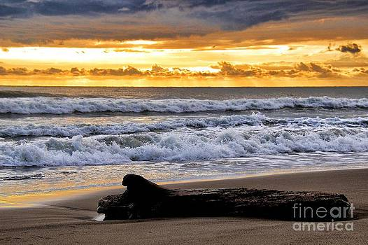 Jaco Beach Sunset by Gary Campbell