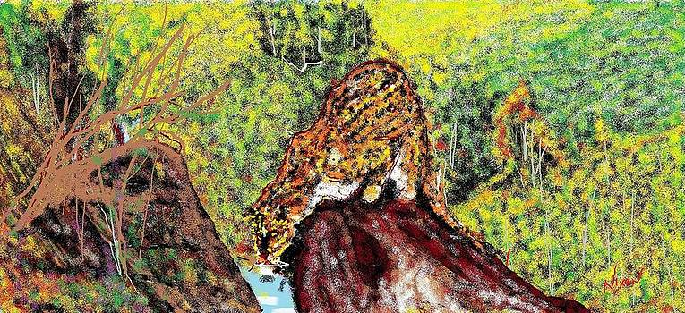 Jaguar on the rocks by Nixon Mwangi