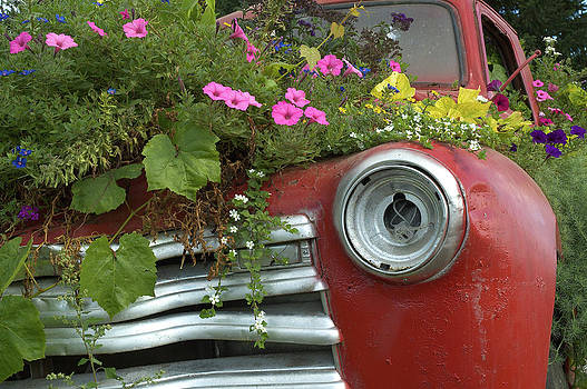 Arthur Fix - Jalopy Garden