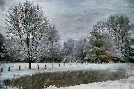 January Snow by Kathy Jennings