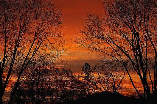 January Sunrise by KimberAnne