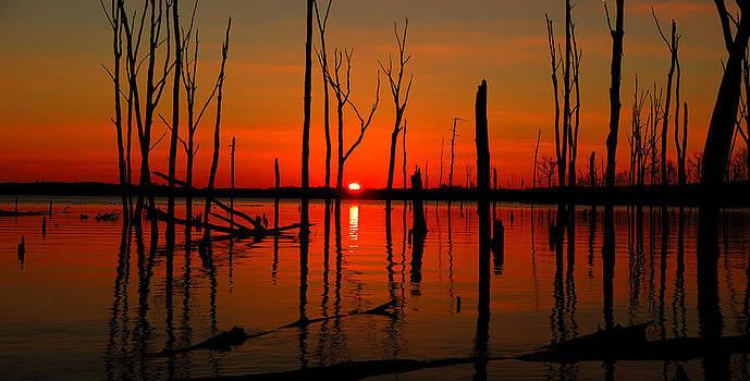 Raymond Salani III - January Sunrise