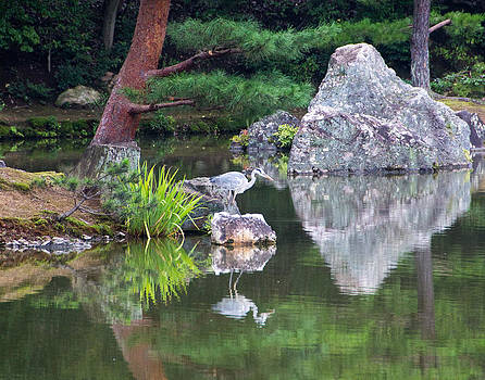 Japanese Crane Upon the Water by Laura Palmer
