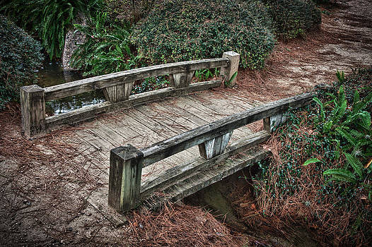 James Woody - Japanese Garden Bridge