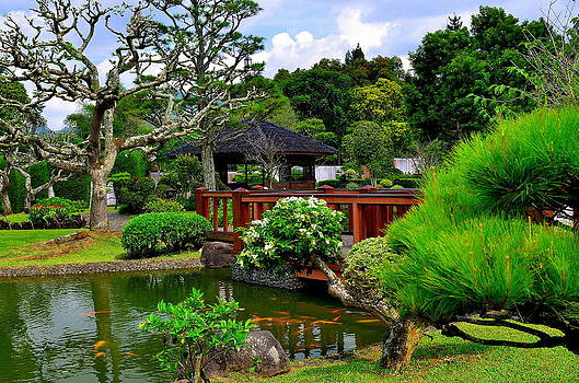 Japanese Garden by Erwin Sembiring