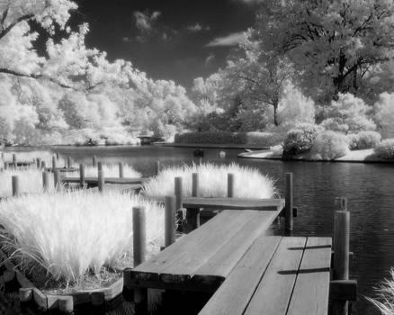 Japanese Garden by Jay Swisher