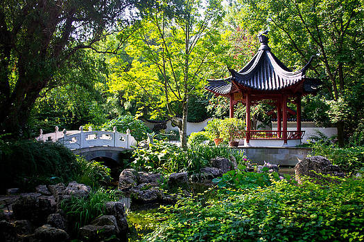 Japanese Garden by Kristy Creighton