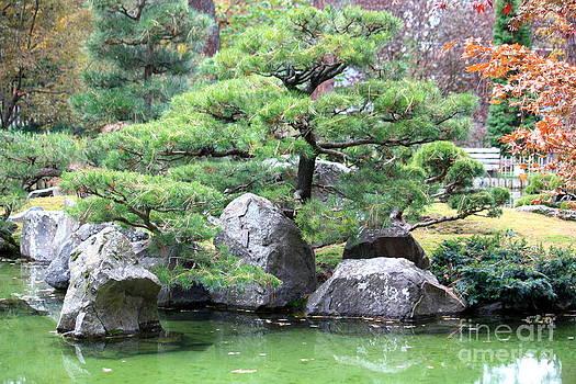 Danielle Groenen - Japanese Garden Pond