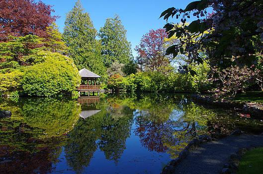 Marilyn Wilson - Japanese Garden Pond - View 2