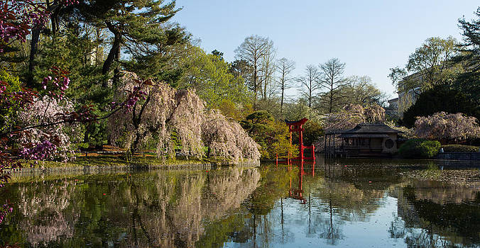 Dave Hahn - Japanese Hill-and-Pond Garden