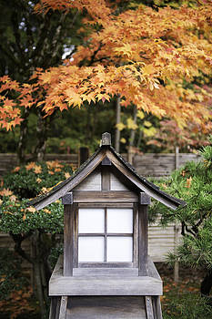 Japanese Lantern by Thomas Chamberlin