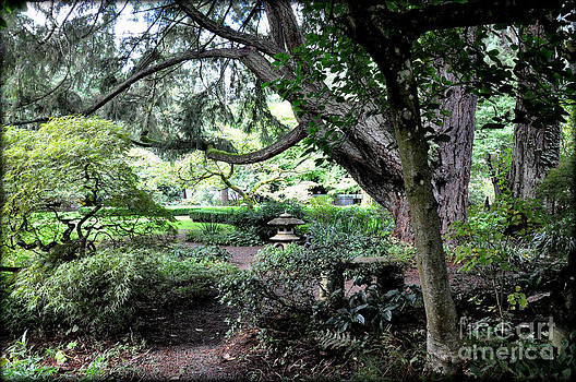 Japanese Maple and Pagoda in Wagner's Garden by Tanya  Searcy