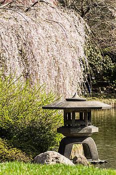David Hahn - Japanese Pagoda