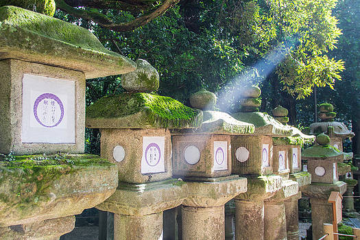 Japanese toro lantern for the dead found in Nara Japan by Laura Palmer