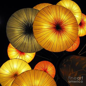 Japanese Umbrellas by Ausra Huntington nee Paulauskaite