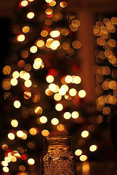 Jar of lights by Danielle Allard