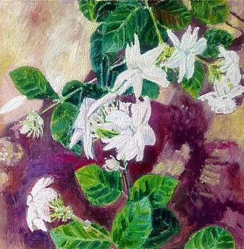 Jasmine by Aditi Bhatt