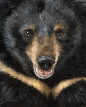 Jasper Moon Bear - In support of Animals Asia by Rachel Stribbling