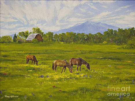 Jefferson Valley Horses by Terry Anderson