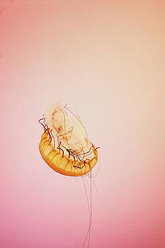 Jellyfish I by La'Trice Dixon