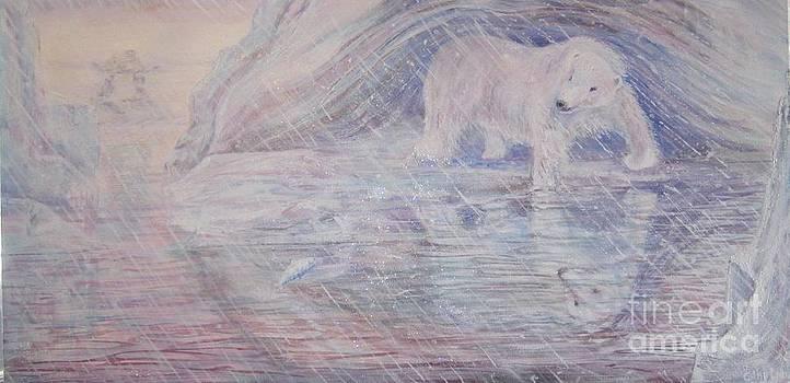 Jena's Bear by Cathy Long