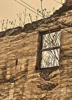 Gregory Dyer - Jerome Arizona - Ruins - 01