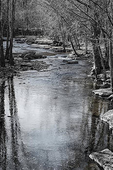 Jessamine Creek by Diana Boyd