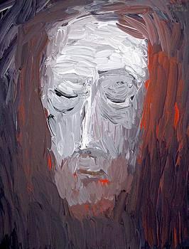Veil of Veronica 2014 by Karl  Leonhardtsberger