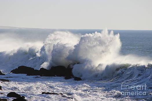 Jetty Wave by Erik Barker