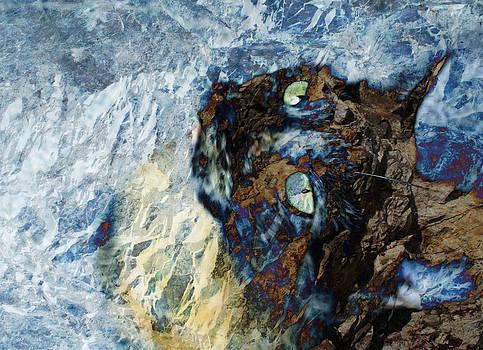 Jezz Blu by Janet Kearns