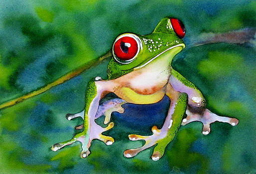 Susan Duxter - Joe - the Red Eyed Tree Frog