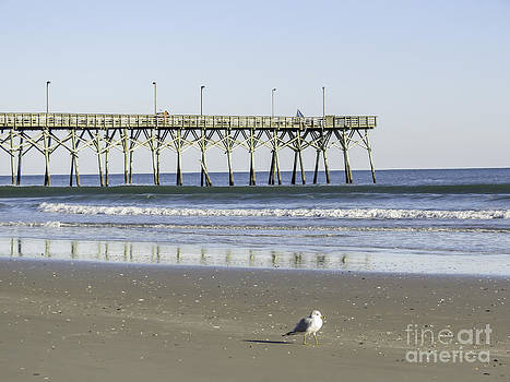 Jolly Roger Pier On Topsail Beach NC by Crissy Anderson