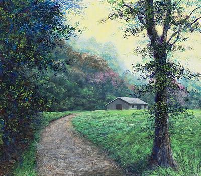 Jones Gap by Joe Mckinney
