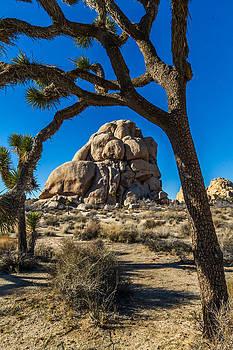 Roger Mullenhour - Joshua Tree Jumbo Rocks