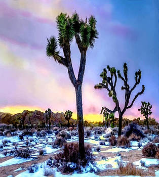 Joshua Tree National Park Twilight by Bob and Nadine Johnston