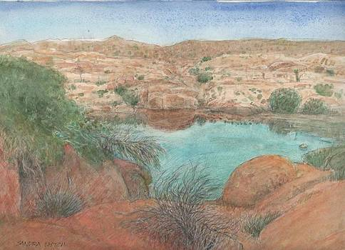 Sandra Lytch - Joshua Tree Water Hole