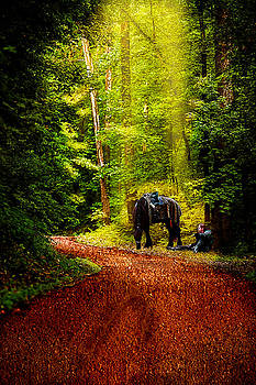 Journey's Pause by Gene Linzy