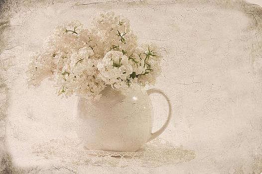Sandra Foster - Jug Of White Lilacs