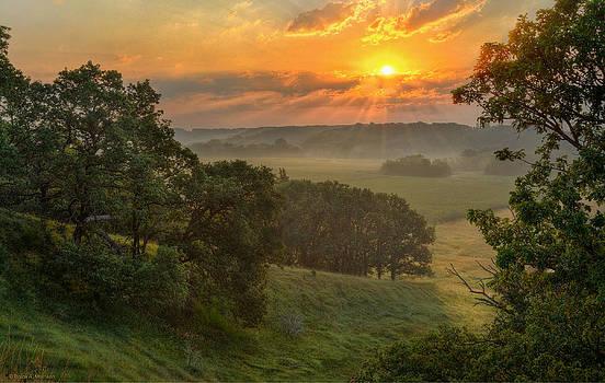 July Morning Along the Ridge by Bruce Morrison