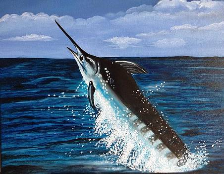Jumping Marlin by Caroline  Stuhr