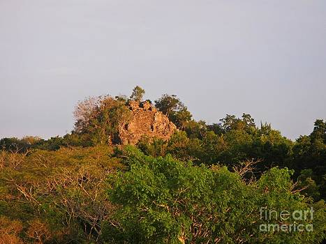 John Malone - Jungle Canopy and Ruins