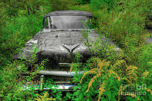 Brenda Giasson - Jungle Fever Vintage Chevy