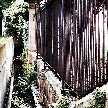#jungle In The City. #architecture by Vinsdebber Vinsdebber