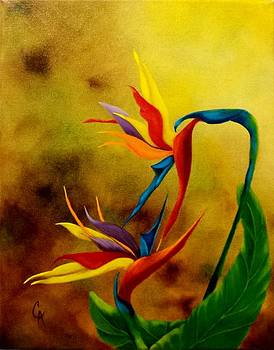 Jungle Love by Carol Avants
