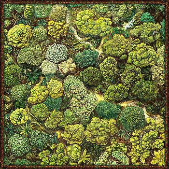 Jungle View by Odysseas Stamoglou
