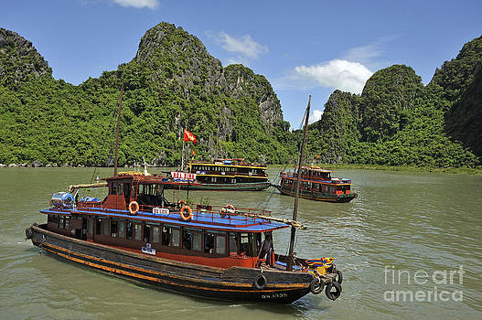 Junk boats in Halong Bay by Sami Sarkis