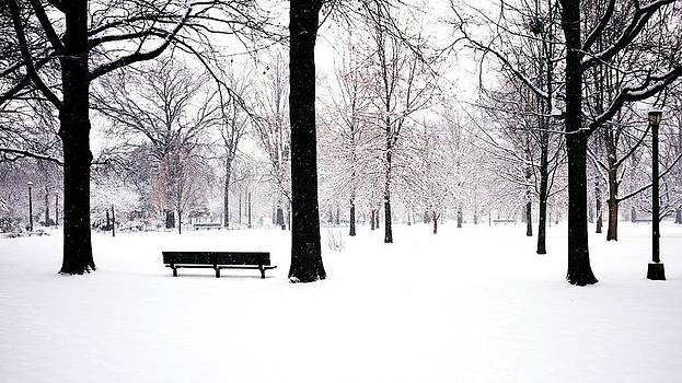 Jupiter Park In Snow by Mark Garbowski